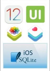iOS12应用开发教程套装大学霸内部资料
